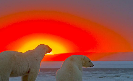 polar_sunset