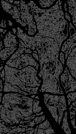 trees_edges_trace_contour_invert